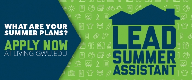 Apply to become a Lead Summer Assistant